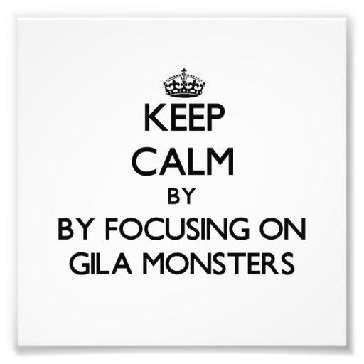 Mantenha a calma focalizando em monstro de Gila Impressão Fotográficas