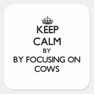 Mantenha a calma focalizando em vacas adesivo quadrado