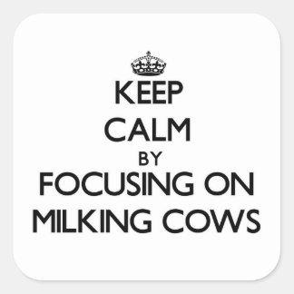 Mantenha a calma focalizando em vacas de ordenha