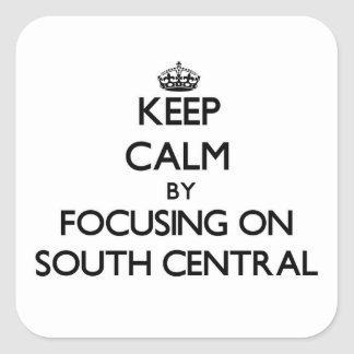 Mantenha a calma focalizando para o sul na central adesivo quadrado