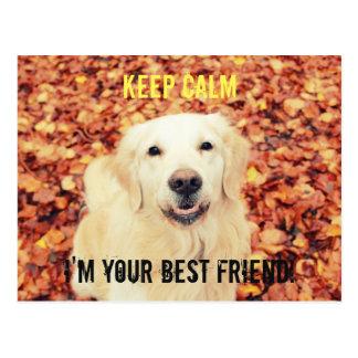 MANTENHA o cartão CALMO para amantes dos cães
