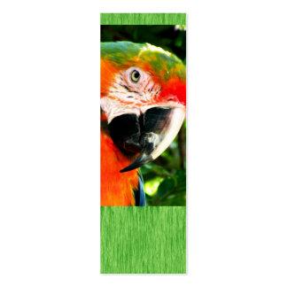 Manutenção programada. Do Macaw escarlate do Cartão De Visita Skinny