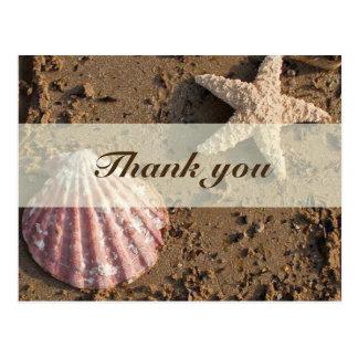 Mar Shell e obrigado da areia você cartão