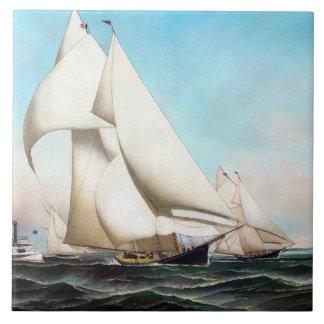 Mares da raça de barco do iate que navegam o