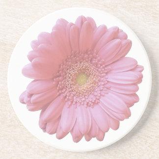 Margarida rosa pálido do gerbera porta copos de arenito