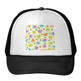 Margaridas coloridos e foto floral das folhas boné