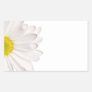 Margaridas personalizadas fundo da flor da adesivo retangular