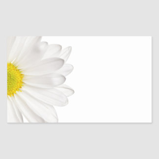 Margaridas personalizadas fundo da flor da margari adesivo retangular