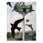 Martins roxo e seu Birdhouse Cartão Postal