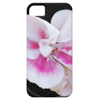 Máscaras cor-de-rosa capas para iPhone 5