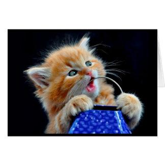 Mastigação bonito do gatinho cartão