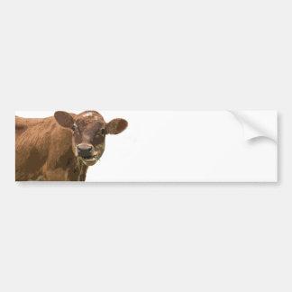 Mastigação da vaca adesivo para carro