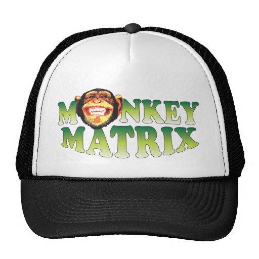 Matriz do macaco bone