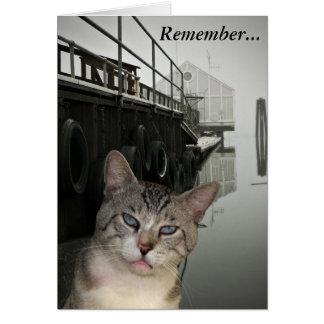 Meece o cartão do incentivo do gato