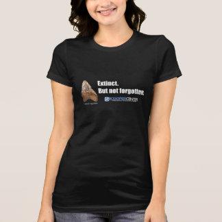 Megalodon é realmente camisa extinto