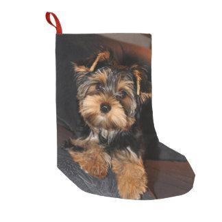Meia De Natal Pequena Cão de filhote de cachorro bonito de Yorkie do