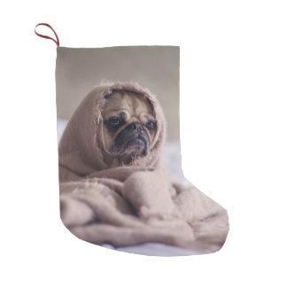 Meia De Natal Pequena Cão de filhote de cachorro do Pug que afaga em uma