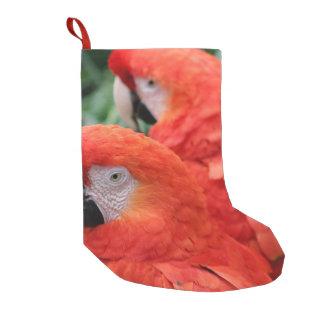Meia De Natal Pequena Escarlate do Macaw
