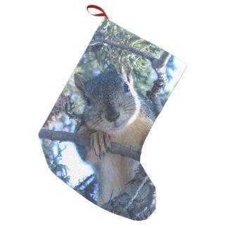 Meia De Natal Pequena Esquilo na árvore -