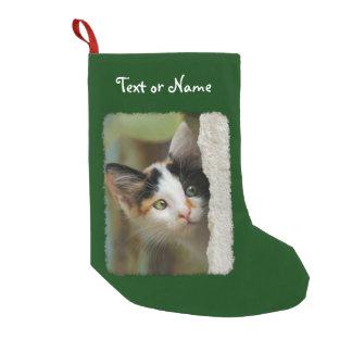 Meia De Natal Pequena Foto curiosa bonito do gatinho do gato - papai