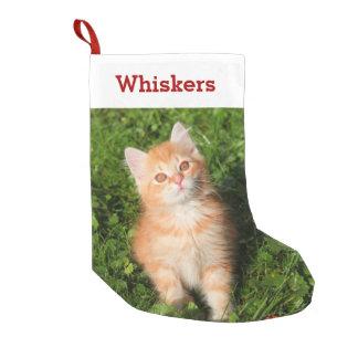 Meia De Natal Pequena Foto e nome do gatinho do amante do animal de