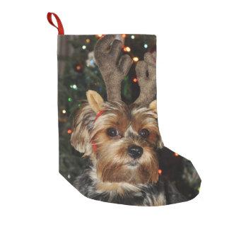 Meia De Natal Pequena Yorkshire terrier bonito com Antlers da rena