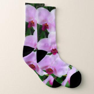 Meias cor-de-rosa adoráveis da fotografia da flor