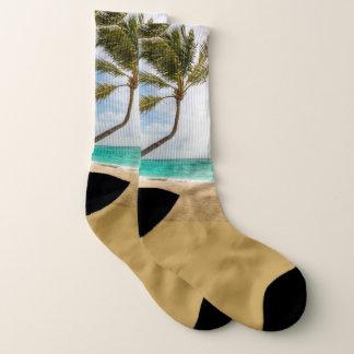 Meias tropicais de balanço da cena das palmeiras