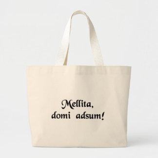 Mel, eu sou casa! bolsas para compras