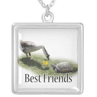Melhores amigos - a tartaruga & o ganso colar com pendente quadrado