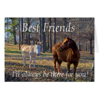Melhores amigos cavalo e cartão do asno