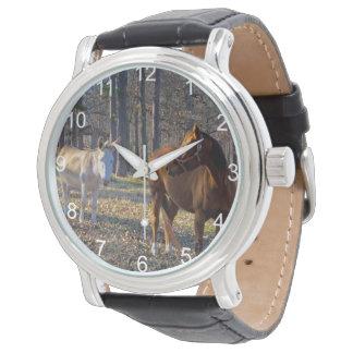 Melhores amigos cavalo e relógios do asno