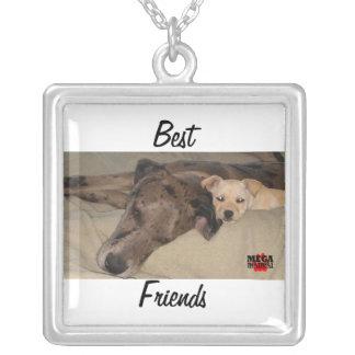 Melhores amigos colar personalizado