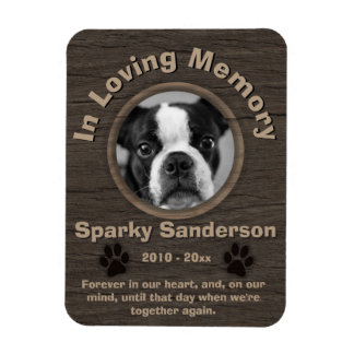 Memorial do cão ímã