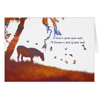 Memorial do cavalo, perda de cartão de simpatia do