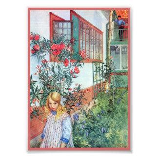 Menina no jardim com flores vermelhas fotos