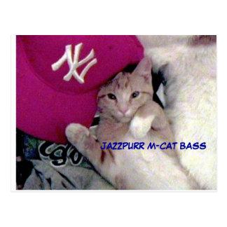 Menino do poster para o amor Jazzpurr Cartão Postal