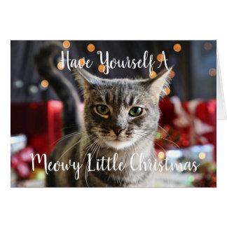 Meowy pouco cartão do Natal
