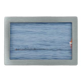Mergulhador do mar na natação do terno do