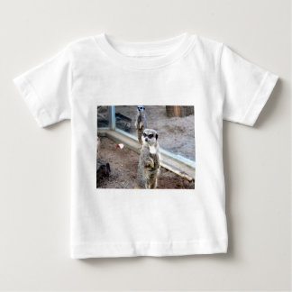 Meros gatos camiseta