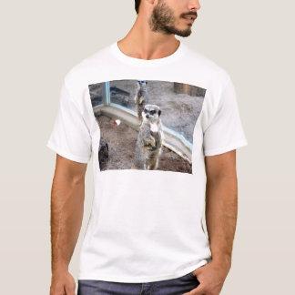 Meros gatos camisetas