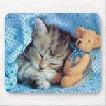 Mesmo amor Teddybears dos gatinhos Mousepad