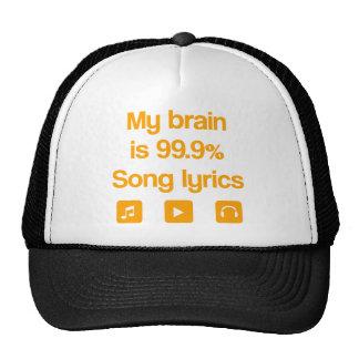 Meu cérebro é 99,9% poemas líricos da canção boné