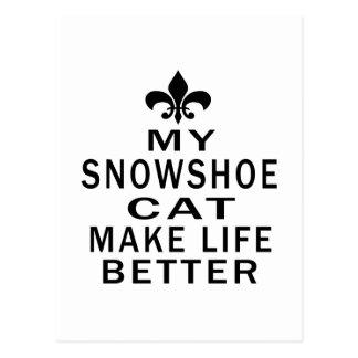Meu gato do sapato de neve faz a vida melhor