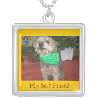 Meu melhor amigo colar personalizado