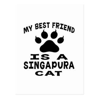 Meu melhor amigo é um gato de Singapura Cartoes Postais