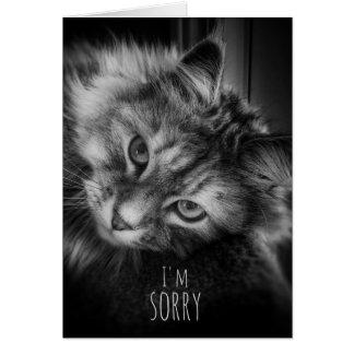 Meu Meowth obtem-me no cartão da desculpa do