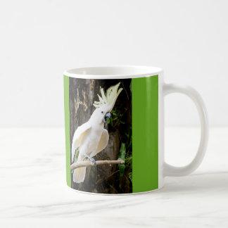 Meu pássaro fala a caneca de café