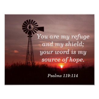 Meu refúgio meu protetor - os salmos verse o poster