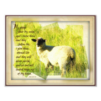 Meus carneiros ouvem meu impressão 8,5 x 11 da voz impressão de foto